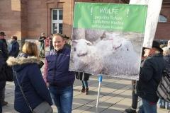 Demonstration des Hessischen Verbandes für Schafzucht- und Haltung e. V. am 15.01.2020 in Wiesbaden