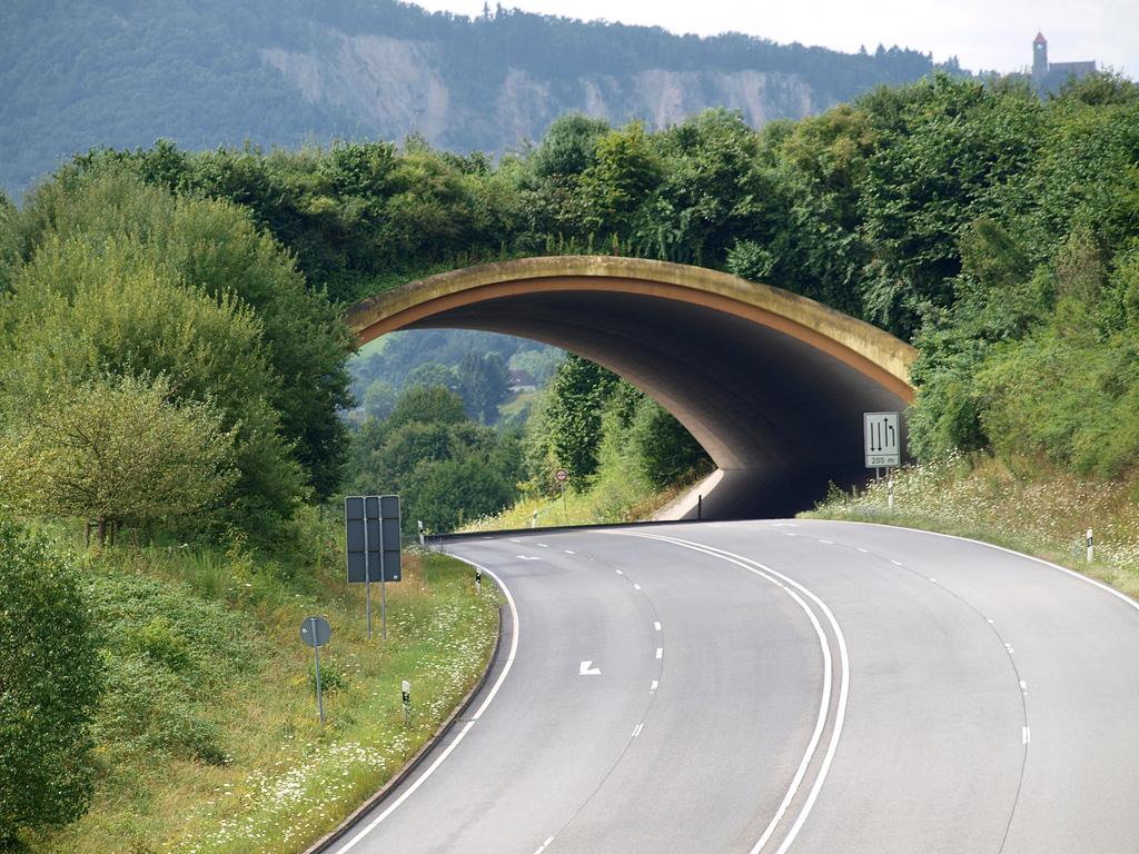 Bild Grünbrücke B 38 Kreis Bergstrasse