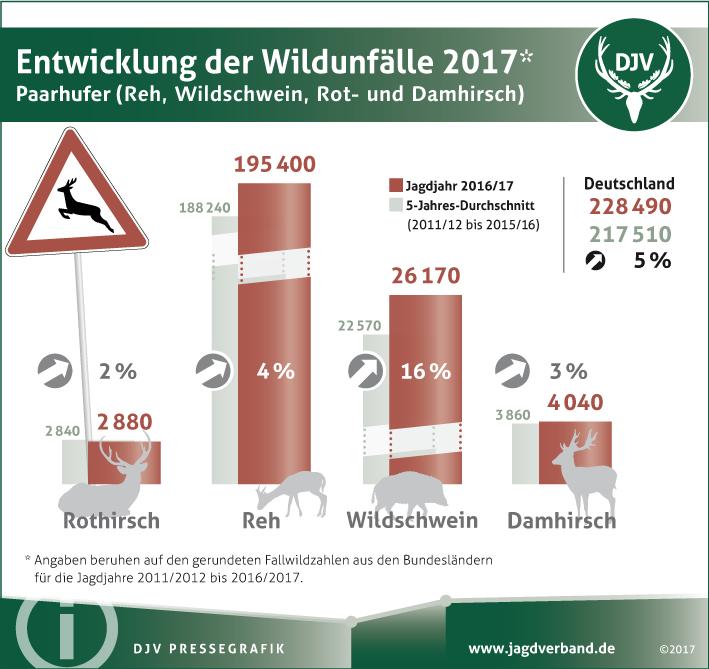 Wildunfälle in Deutschland: Fachtagung Wildunfallprävention in Hannover